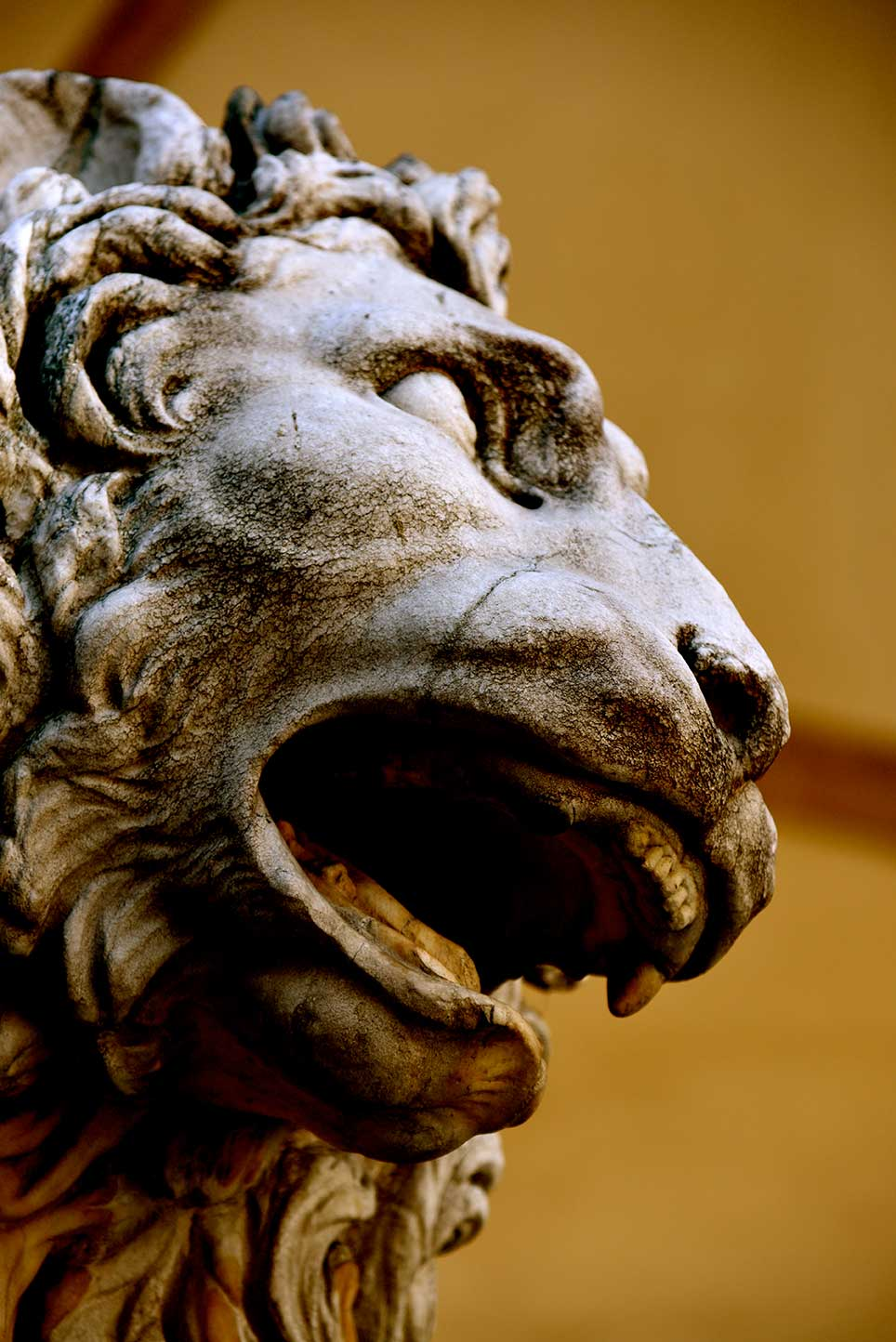 sculpture, gold, lion, Venice, animal, classical, power